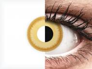 ColourVUE Crazy Lens - Avatar - Sin graduar (2 lentillas)