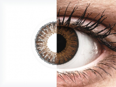TopVue Color daily - Brown - Graduadas (10 lentillas)