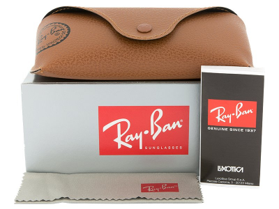 Gafas de sol Ray-Ban Justin RB4165 - 865/T5 POL  - Preview pack (illustration photo)