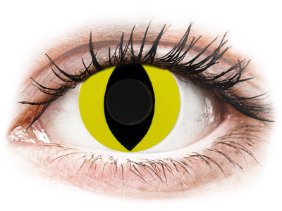 CRAZY LENS - Cat Eye Yellow - Diarias sin graduación (2 Lentillas)