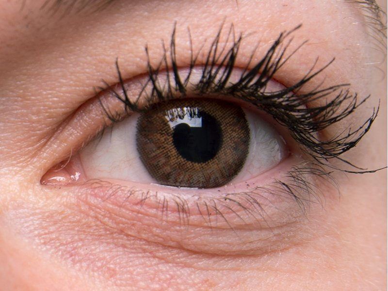 TopVue Color Daily - Graduadas (10lentillas) - Marrón en ojos grises